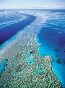 Gran barrera de coral en Australia (© AP Images)