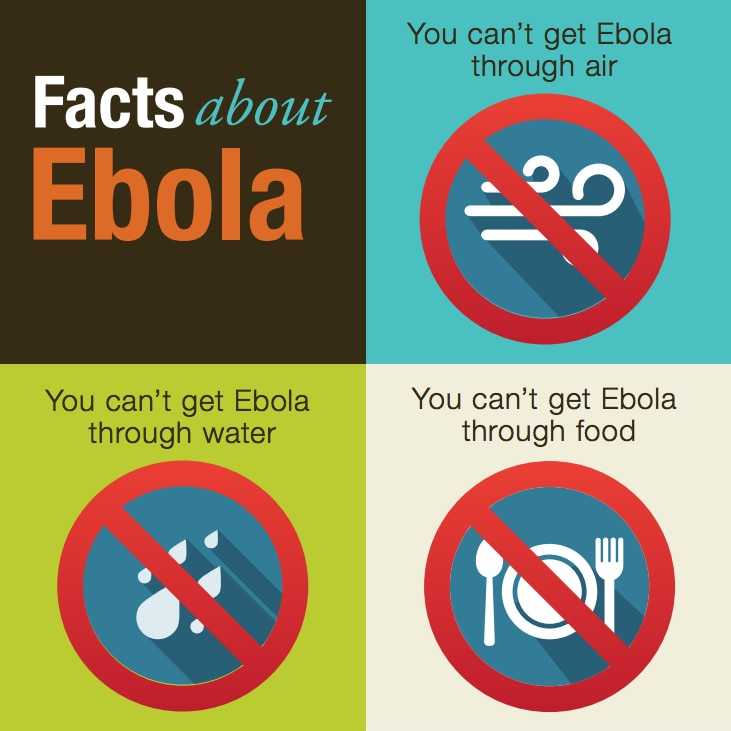 Infographic with facts about Ebola