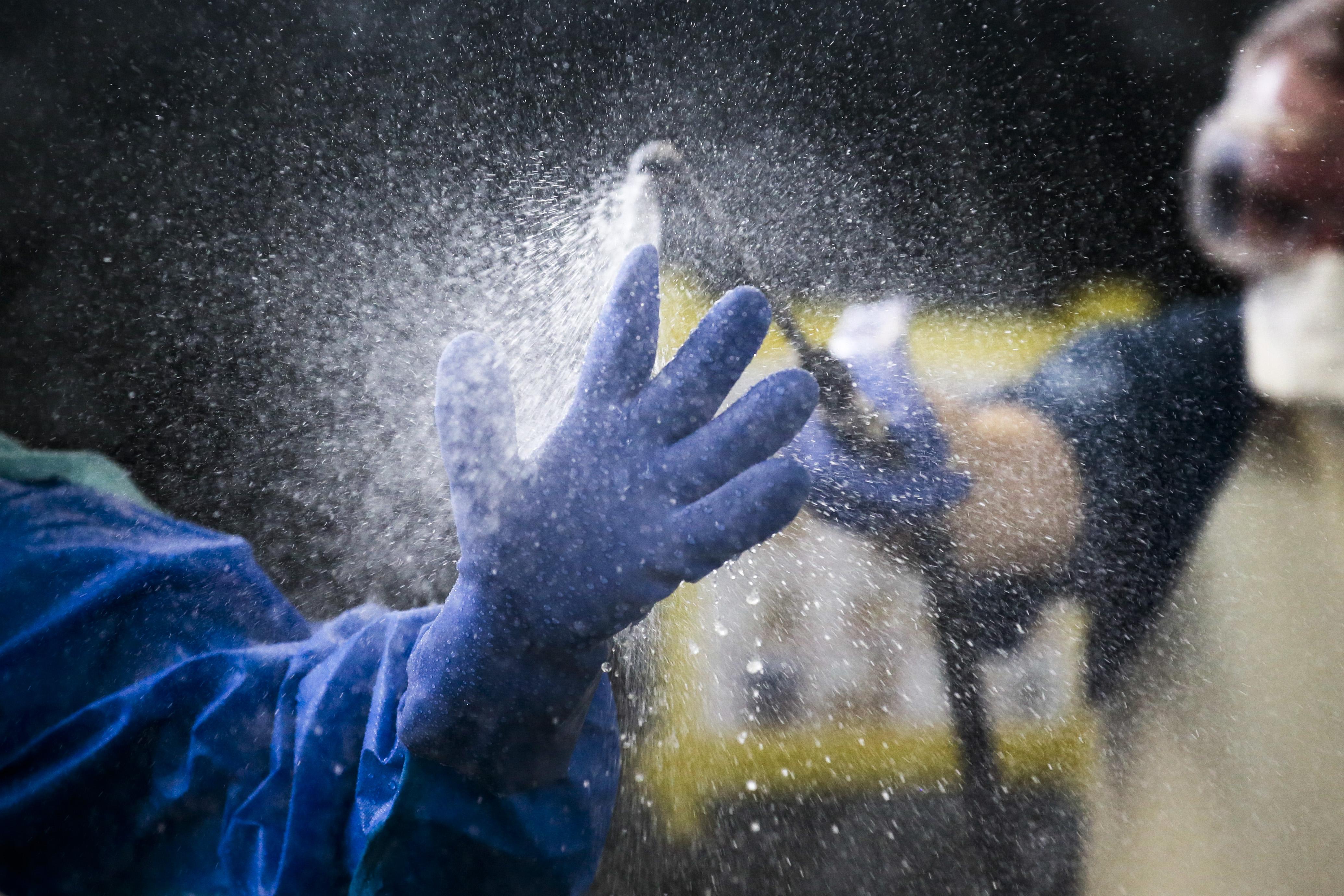 La main gantée d'un travailleur médical se fait asperger d'un liquide désinfectant.