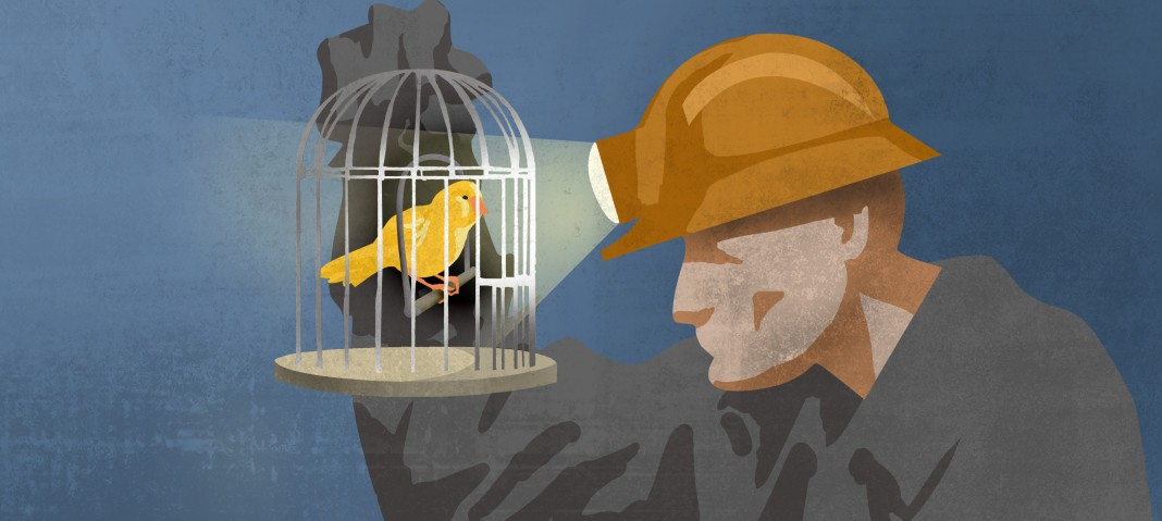 Illustration of canary in the coal mine idiom (State Dept./Doug Thompson)