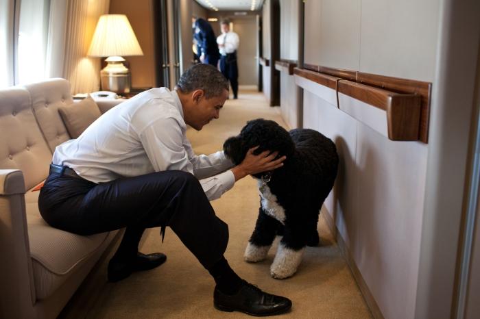 الرئيس أوباما مع كلبته (White House)