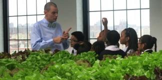 استیون ریتس با دانش آموزانش در یک گلخانه صحبت می کند. (عکس اهدایی از ماشین سبز برانکس)