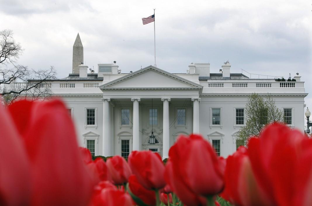 لاله های کاخ سفید (عکس از آسوشیتدپرس)