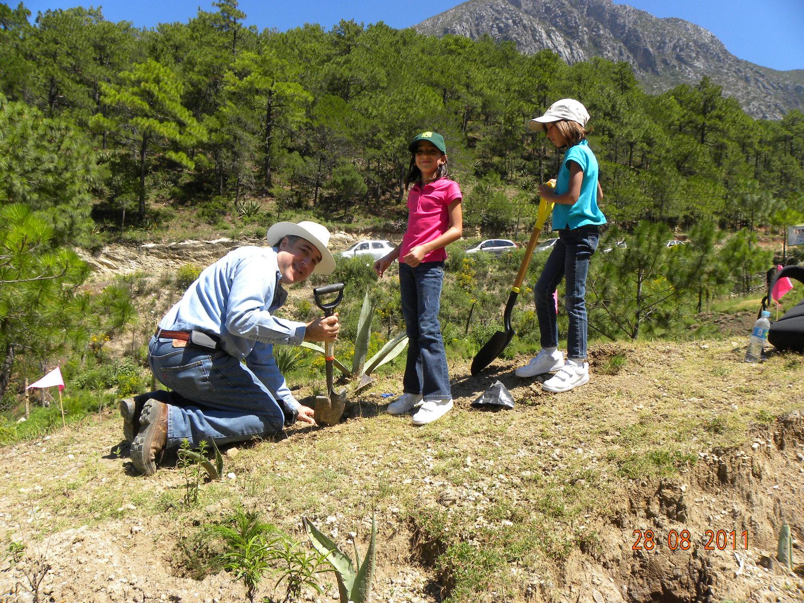 داوطلبان در تپه درخت می کارند (Pronatura Noreste A.C.)