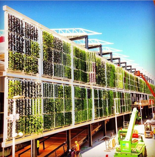 垂直立面农场的最后构建阶段 (biberarchitects/Instagram)