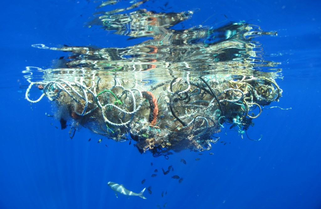Underwater view of clump of plastic debris floating on ocean surface (Courtesy of Steven Guerrisi/Flickr)