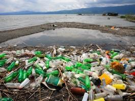 Shoreline covered with plastic soda bottles (Shutterstock)