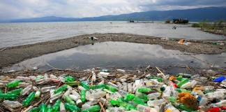 Shoreline covered with plastic soda bottles (Shutterstock)