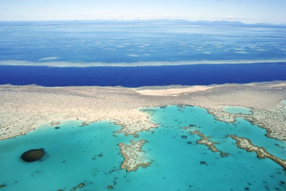 Taman laut Great Barrier Reef di Australia adalah salah satu ekosistem terumbu karang terbesar di dunia, dengan luas 344,400 kilometer persegi. (© deb22/Shutterstock)