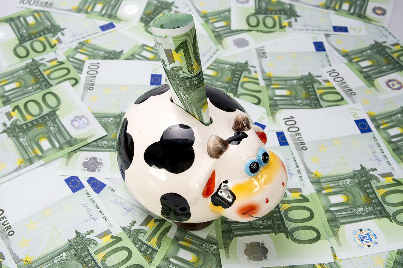 Une tire-lire qui a la forme d'une vache, posée sur une table couverte d'euros. (Shutterstock)