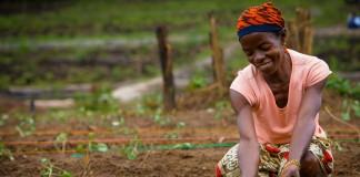 Mujer plantando plántulas en secciones delimitadas (Foto cedida por Conferencias TED/Flickr)