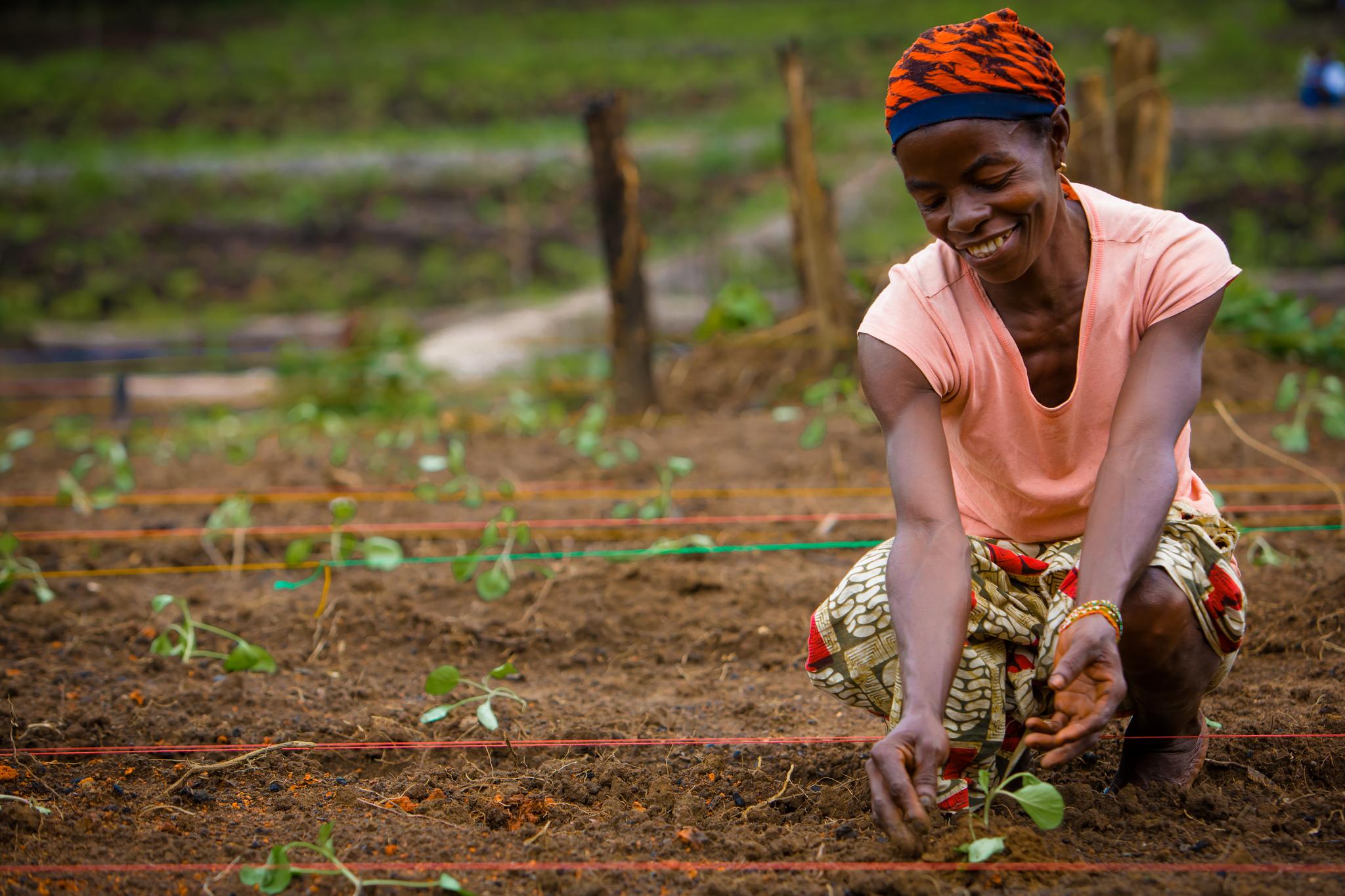 Avec des milliards de personnes nourrir l agriculture for L agriculture