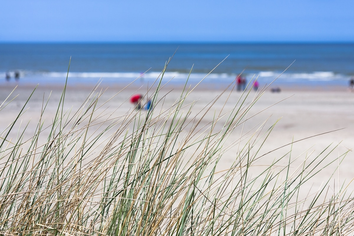 People laying on a beach with grass in the foreground (Shutterstock)