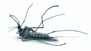 dead_mosquito_gif