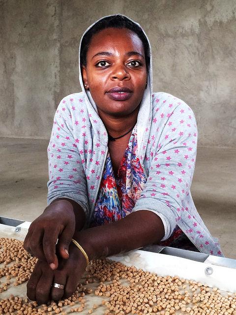 Une femme avec un plateau de pois-chiches (David Kahrman/USAID Ethiopia)