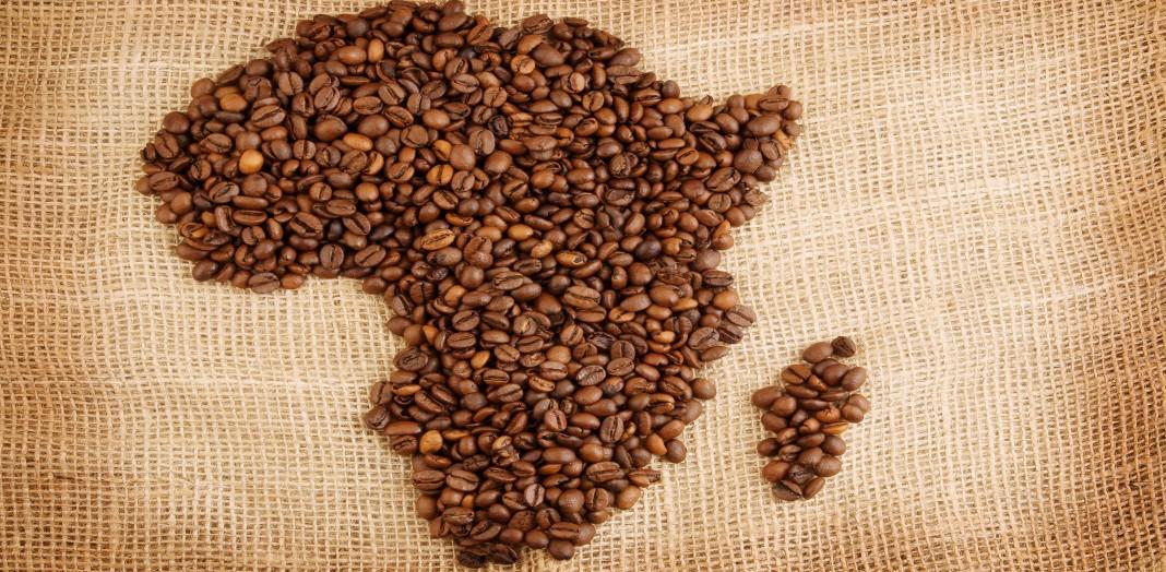 Granos de café en forma de África en sacos de arpillera (Shutterstock)