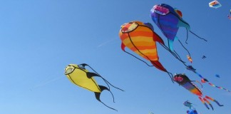 بادبادک رنگینی که به شکل یک حیوان ساخته شده و برفراز ساحل در پرواز است. (عکس از آسوشیتدپرس)