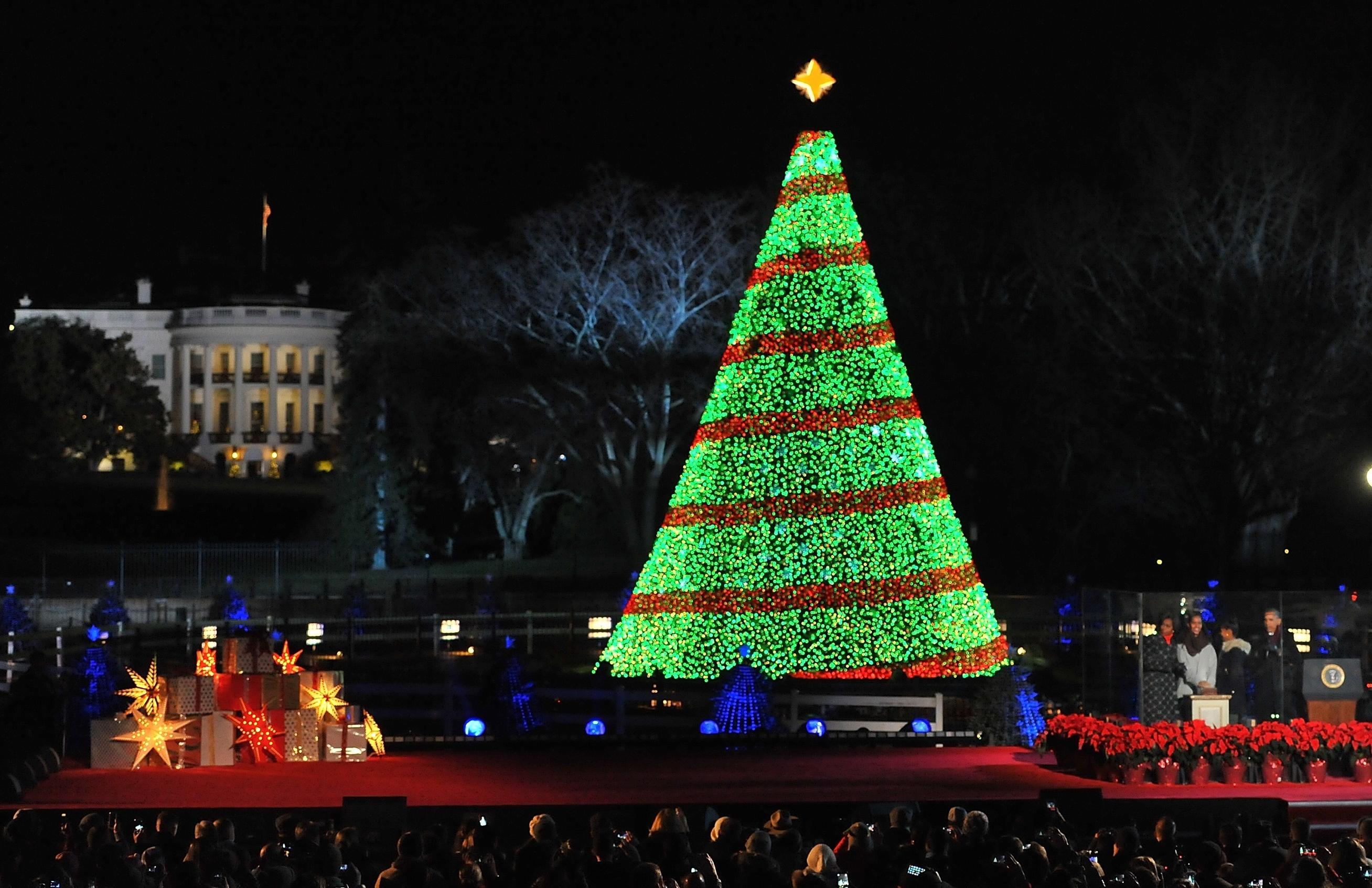 Cerimônia de iluminação da Árvore de Natal Nacional (© Getty Images)
