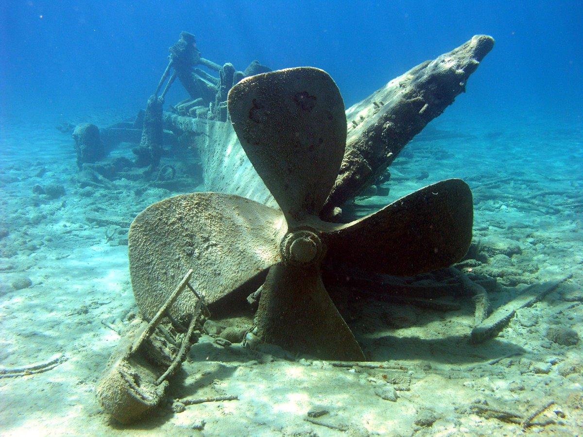 Национальный морской заповедник Тандер-Бей | NOAA