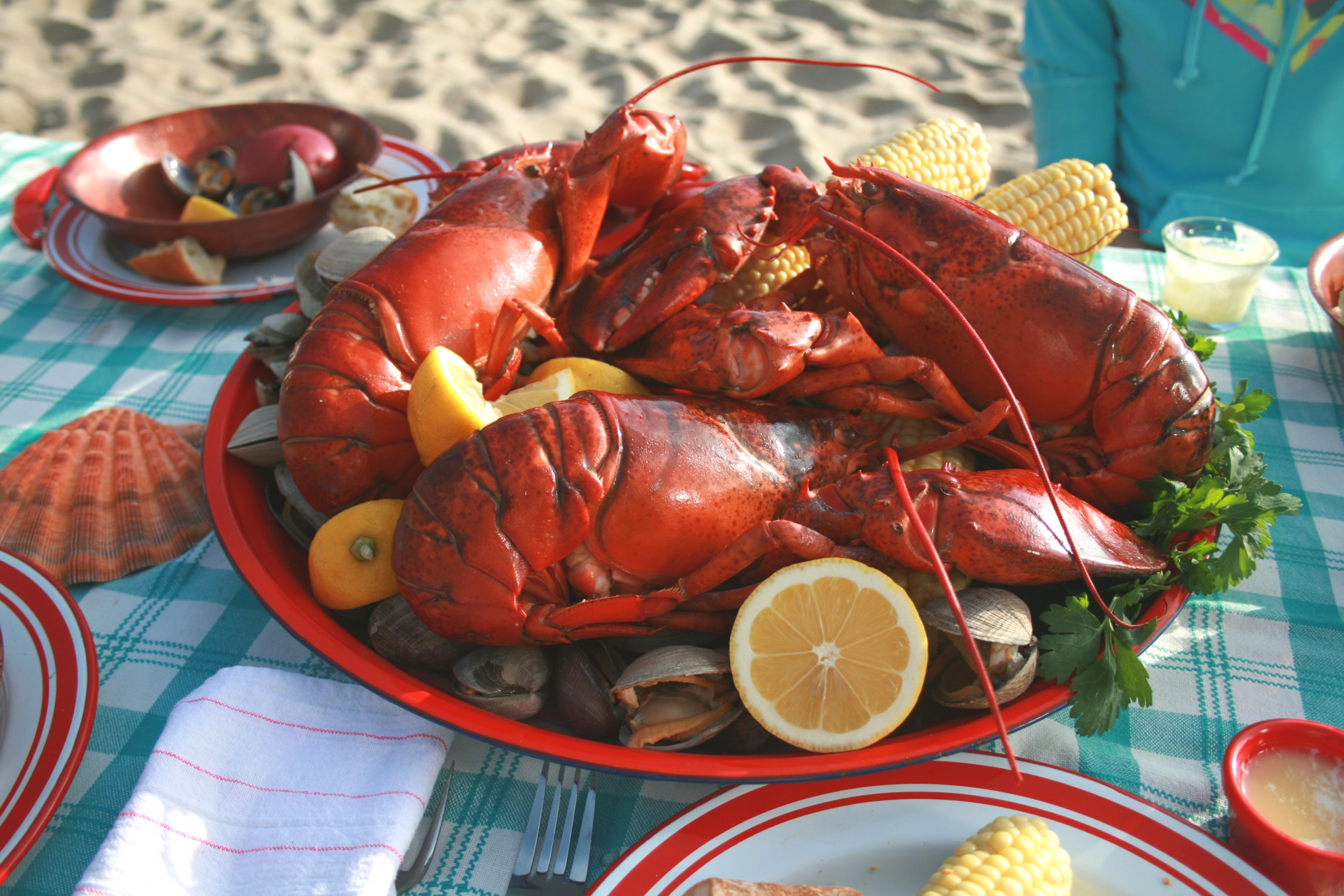Du homard et des palourdes dans une assiette (Thinkstock)