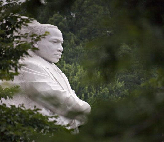 Martin Luther King, Jr. Memorial viewed through trees (© AP Images)