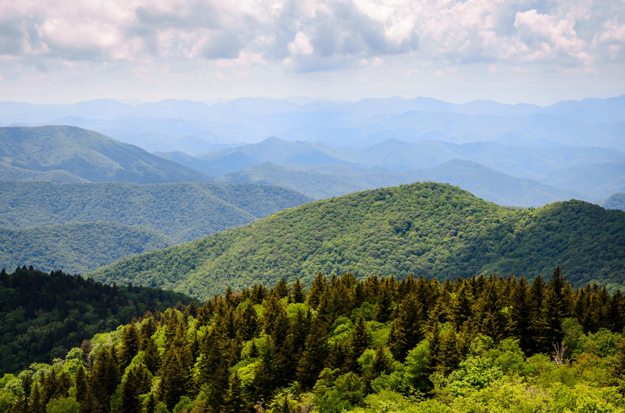 Vue panoramique de montagnes recouvertes de forêts (Thinkstock)