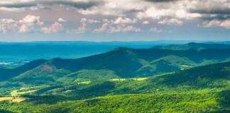 تپه های پوشیده از جنگل (Thinkstock)