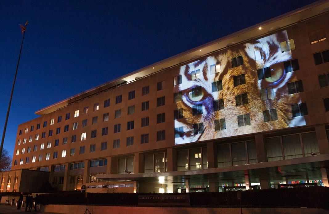 La cara de un tigre proyectada en fachada de un edificio (Depto. de Estado/D.A. Peterson)