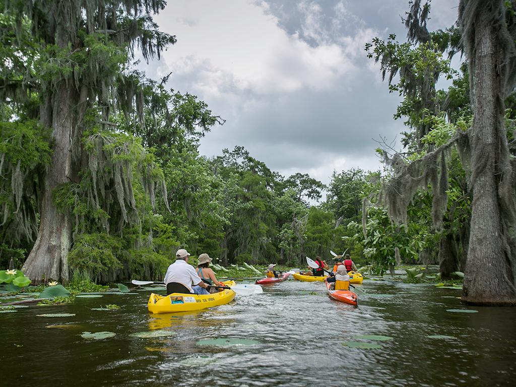 Kayakers paddling through a Louisiana bayou (Louisiana Dept. of Culture, Recreation and Tourism)