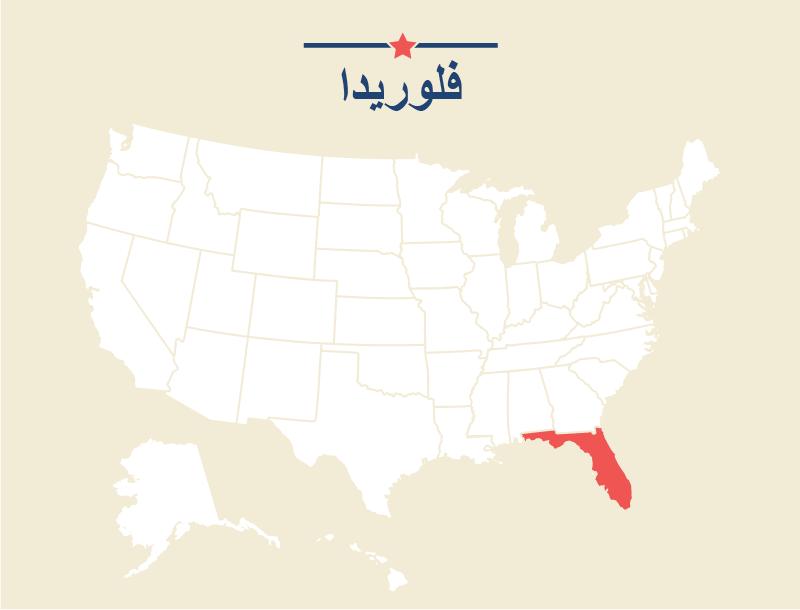 Florida_Persian