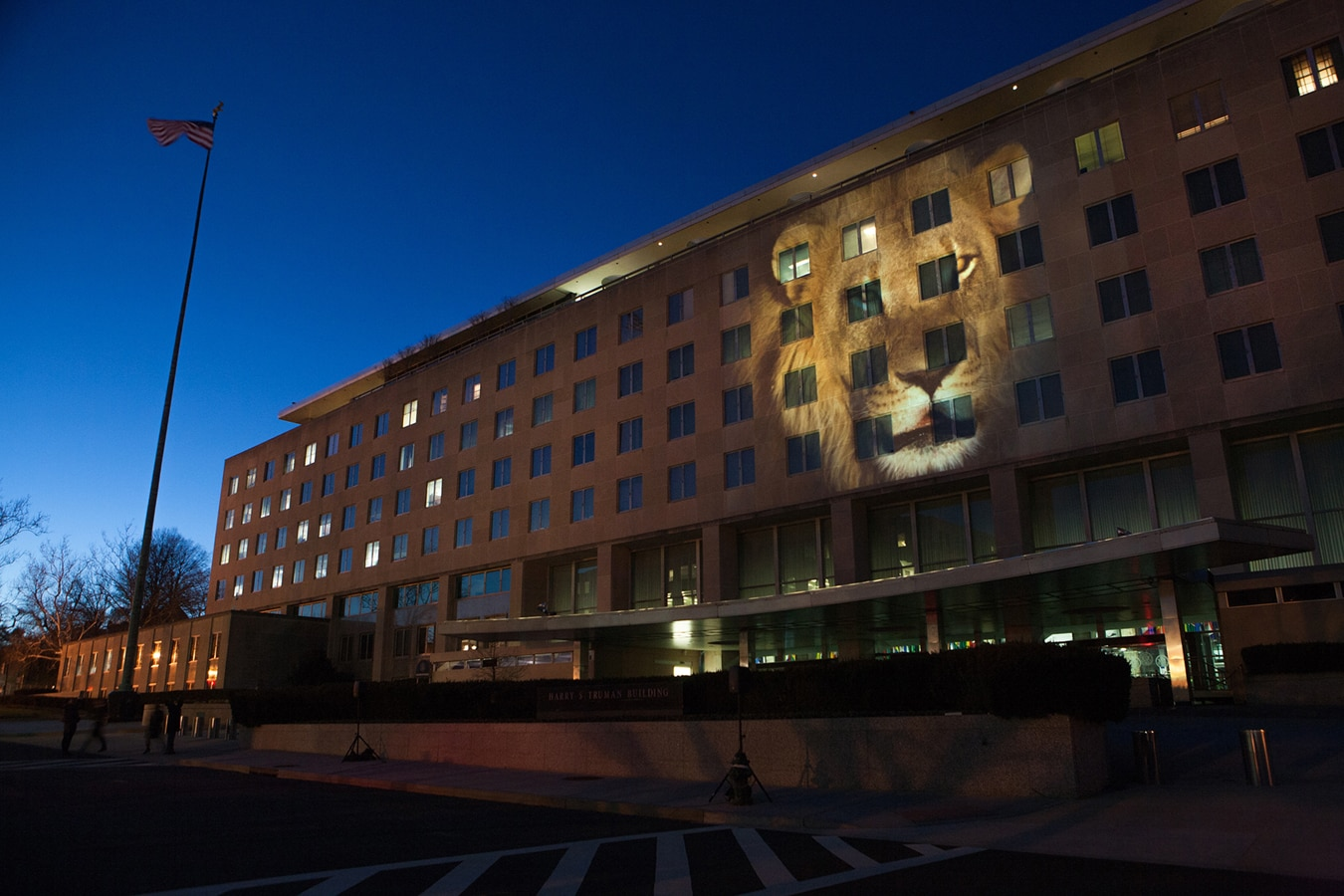 Foto de león proyectada en fachada de un edificio (Depto. de Estado/D.A. Peterson)