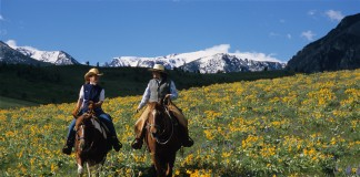 Couple on horseback in field with mountains in background (Courtesy of Montana Office of Tourism)