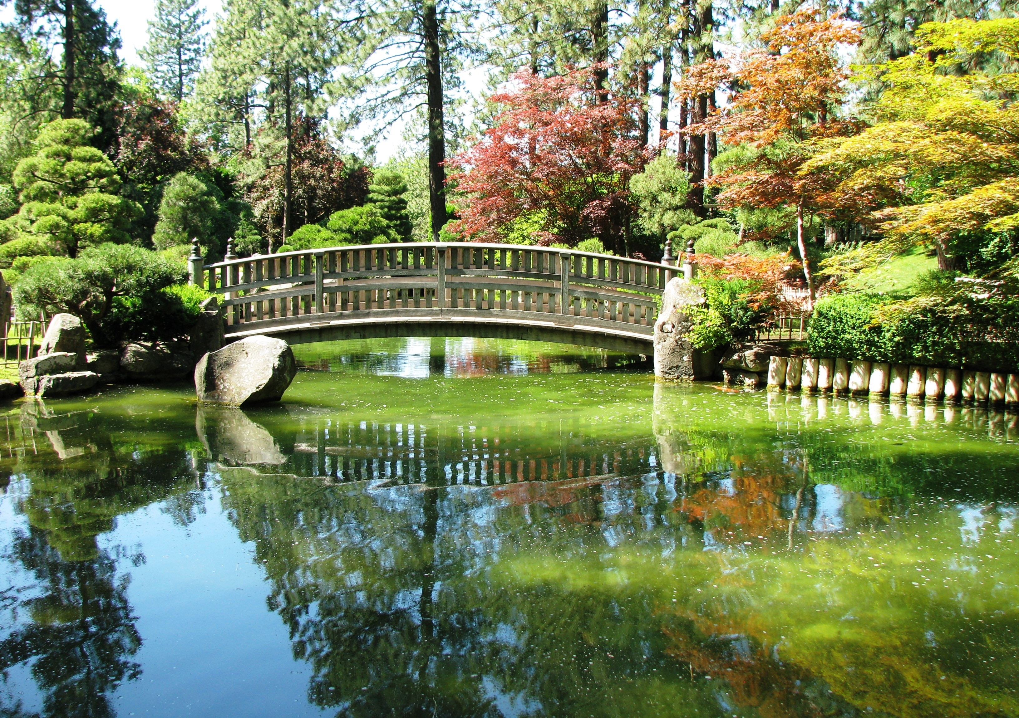 Bridge, pond and colorful trees (Shutterstock)