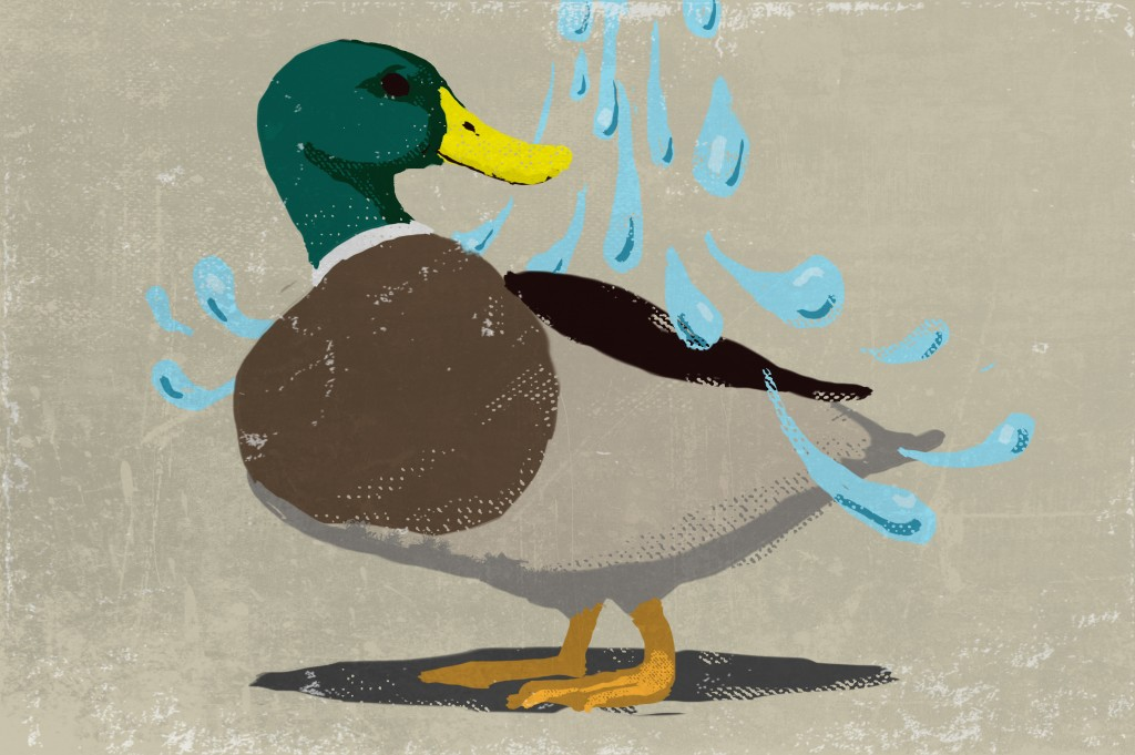 Illustration of a duck standing under a spray of water (State Dept./Doug Thompson)