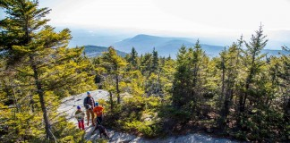 People hiking through a forest (New Hampshire State Parks)