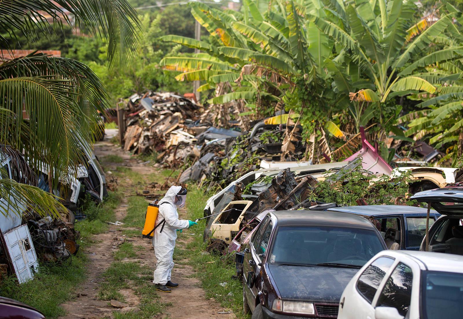 Работник в защитном костюме распыляет инсектицид на свалке автомобилей, окруженной тропическими деревьями (© AP Images)