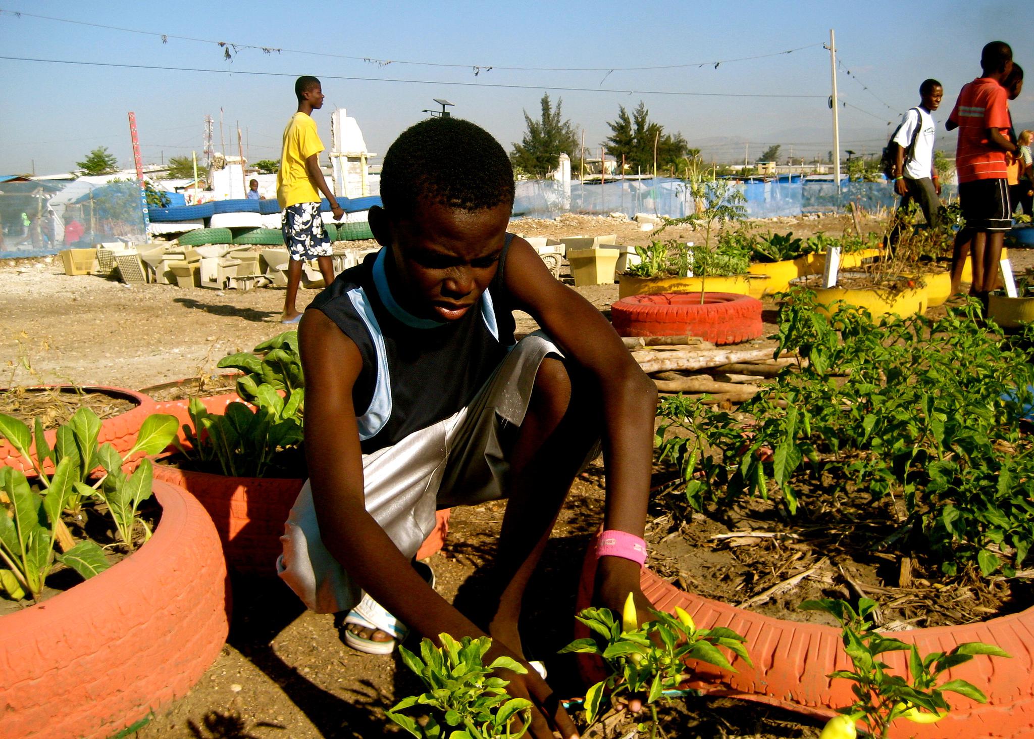 Boy planting garden (Artistsactivists/Flickr)