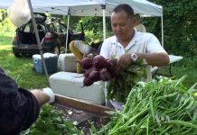 Man holding bunch of beets at market (VOA)
