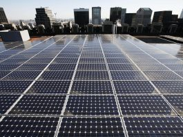 Rooftop solar panels with skyscrapers in the distance (© AP Images)