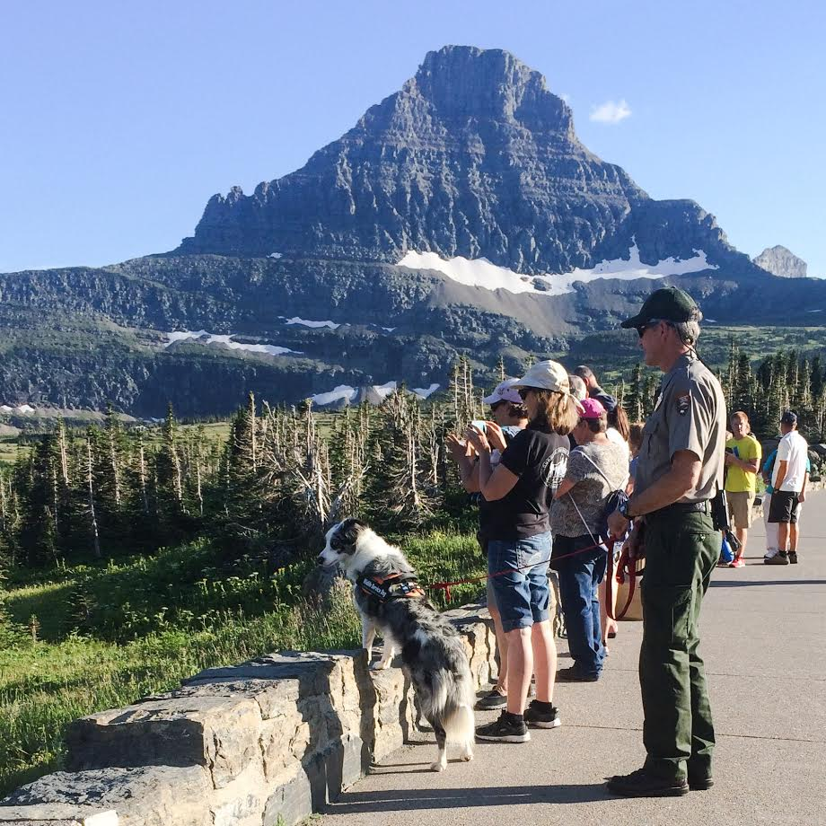 Border collie and people looking over wall near mountain (NPS/A.W. Biel)