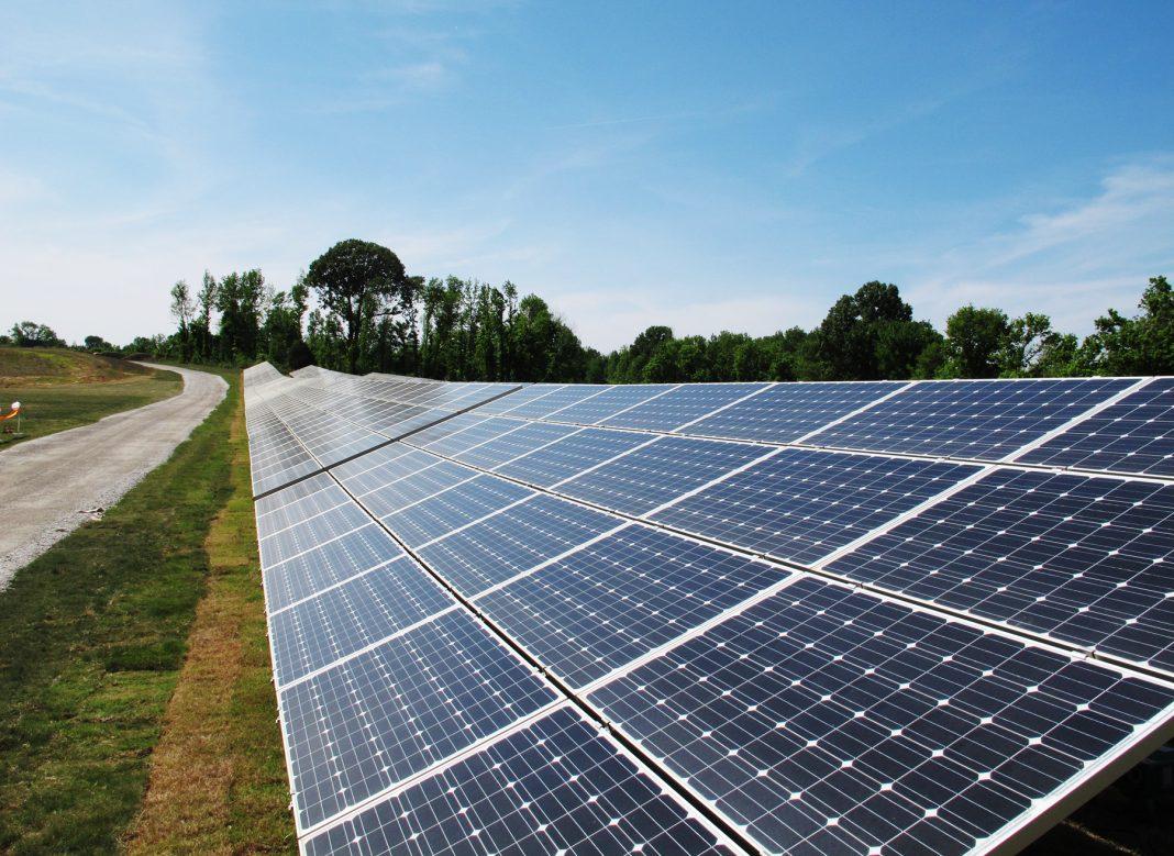 Des panneaux solaires le long d'une route de campagne (© AP Images)