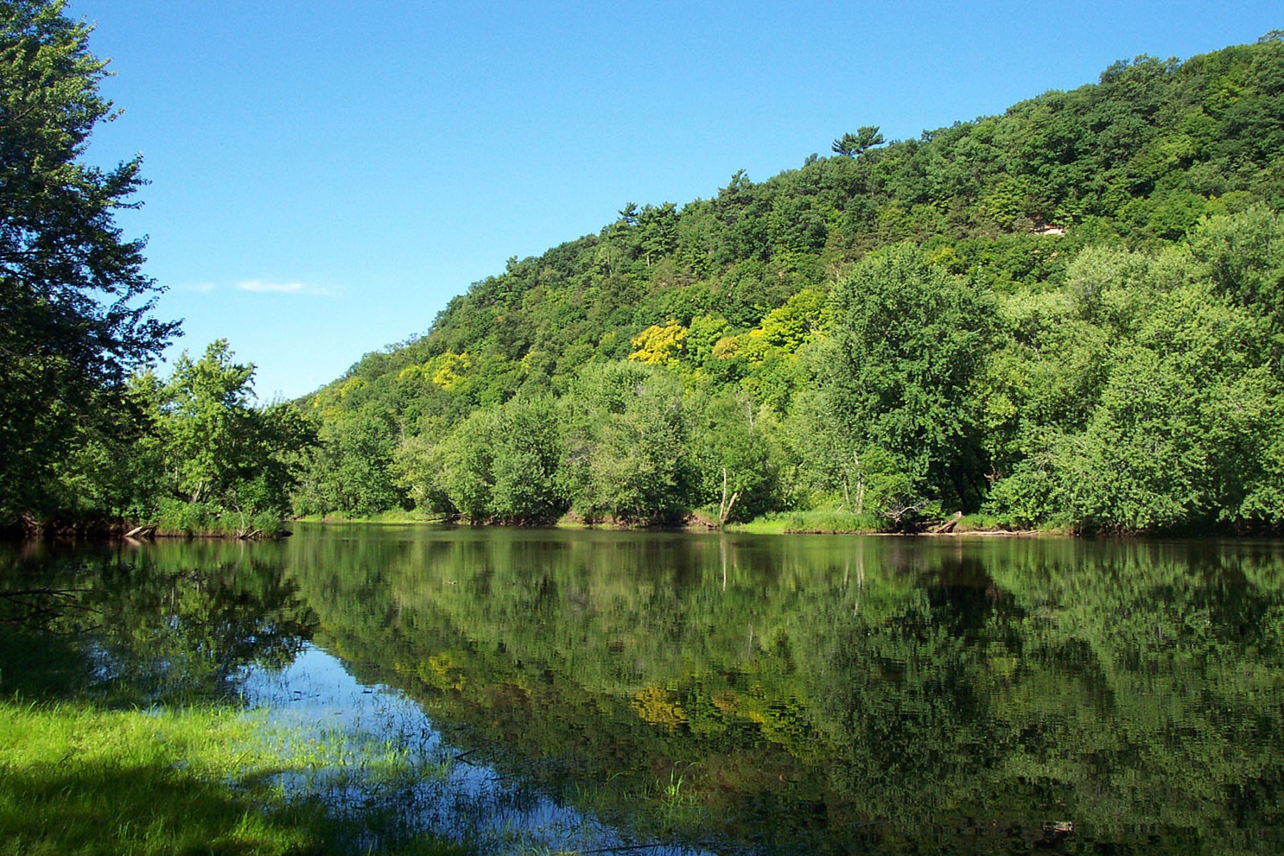 A river bordered by lush green trees (NPS)