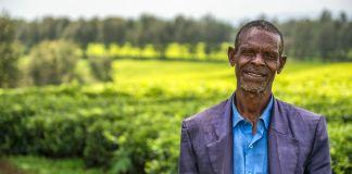 Homem sorri. Ao fundo, uma plantação de chá (Shutterstock)