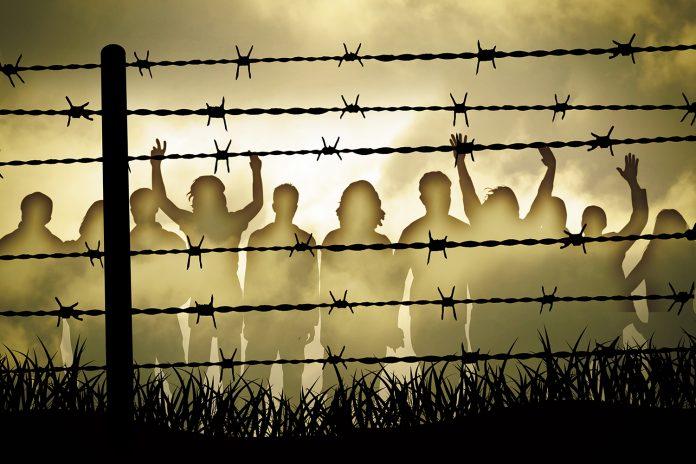 کانٹے دار تاروں کے پیچھے قیدی (Shutterstock)