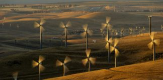 Rows of whirling wind turbines on hills (© AP Images)