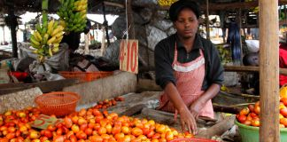 Person handling tomatoes at market stall (© AP Images)