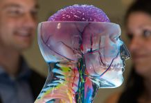 Two people looking at artificial human head (© AP Images)