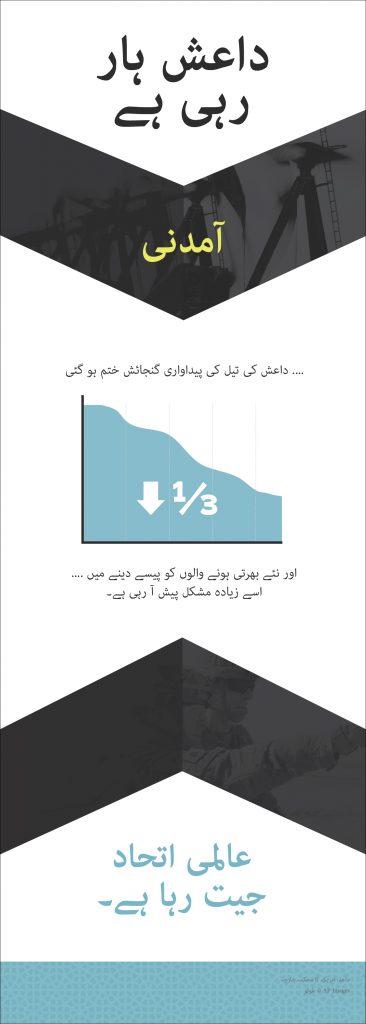 ISIS_Panels_Urdu_Revenue