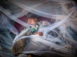 Menino deitado em cama coberta por mosquiteiro (© AP Images)