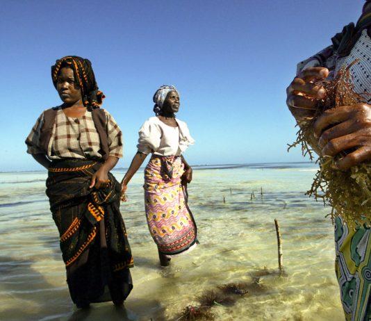 Mulheres de pé na praia, com os pés na água (© Marco Longari/AFP/Getty)